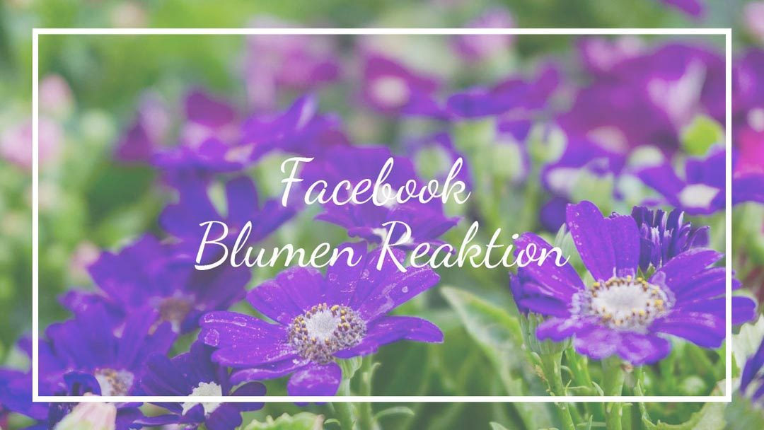 Facebook Blumen Reaktion / Emoji / Like